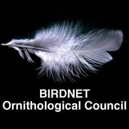 Ornithological Council