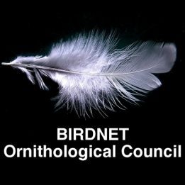 Ornithological Council
