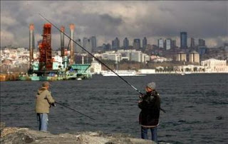 Advierten de la extinción de 50 especies de peces en el Mar Negro